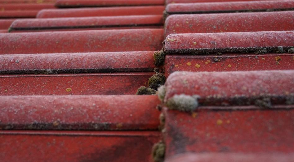 mosh roofing