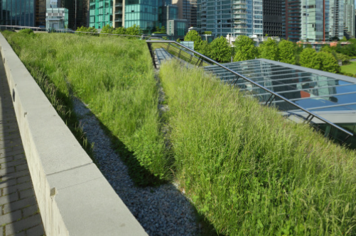 sustainable roof